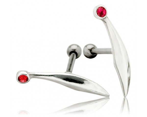 Piercing oreille twig